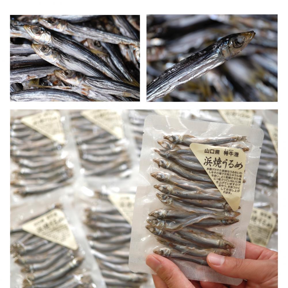 山口北浦魚 開干し、丸干し